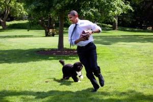Dromen over Obama