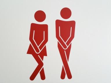 Dromen over WC's